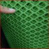 小鸡网床用大孔 脚踏网片现货 塑胶冲孔网厂家