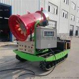 人工制雪机造雪设备 滑雪场用自动降雪机