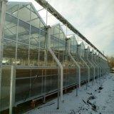 山東濰坊智慧溫室專家智慧玻璃溫室建設工程
