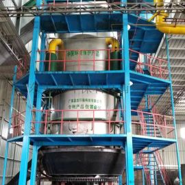 生物质气化炉 广东宝杰20吨锅炉