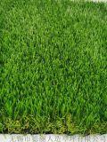 厂家直供 DEL-298EL 休闲景观人造草坪