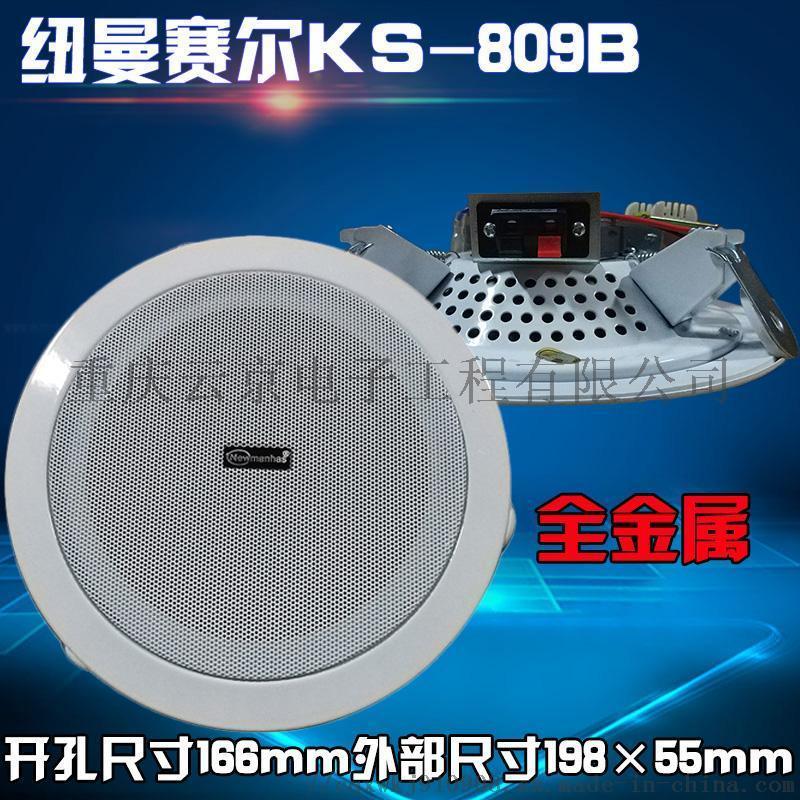 紐曼賽爾 KS-809 全金屬吸頂音響
