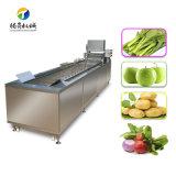 专业银条菜清洗机 喷淋气泡冲浪洗菜机 厂家长期现货供应