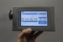 负氧离子检测仪负离子检测仪负氧离子监测仪器