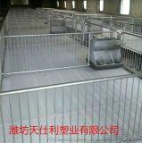 母猪保育床 母猪产床漏粪板 猪用塑料漏粪板