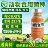 綠殼蛋雞EM菌雛雞育肥添加劑價格