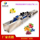 大型不鏽鋼果蔬清洗風乾分選加工生產線定製版