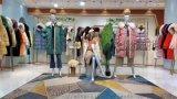 供应歌洛菲品牌女装 杭州优洛可女装 品牌普埃拉尾货