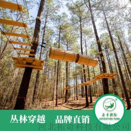 攀林探险游乐设备设计安装品牌厂家定制