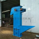 玉米鬥提機定製 垂直板鏈鬥式輸送機 LJXY td