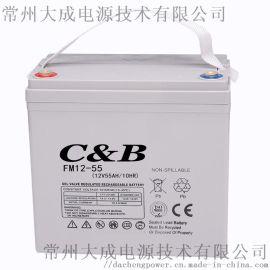 12V55免维护铅酸蓄电池 太阳能机房路灯电池