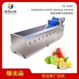 騰昇生產TS-X300蔬菜清洗機,氣泡衝浪洗菜機