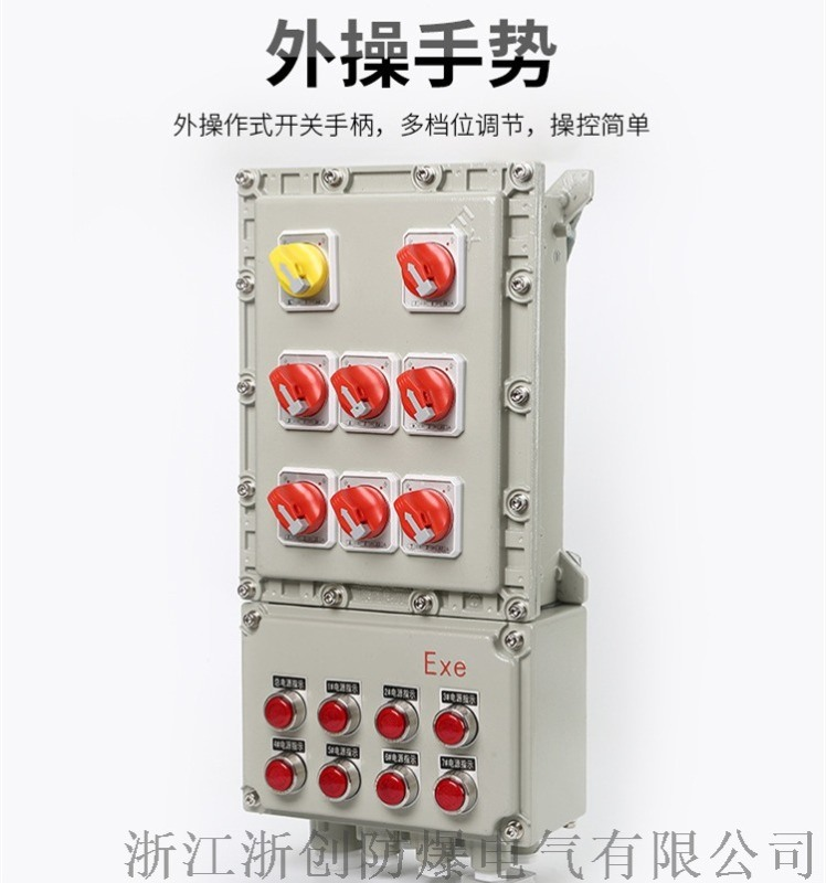 防爆动力配电箱,BXD51防爆动力配电箱