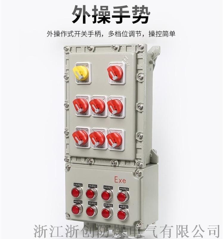 防爆動力配電箱,BXD51防爆動力配電箱