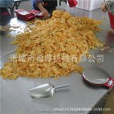 小作坊专用—贵州鲜切土豆片油炸机 红薯片油炸生产线