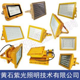 GB8040_GB8040_GB8040防爆LED泛光灯紫光