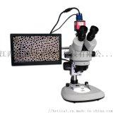 BETICAL三目光學顯微鏡光學儀器