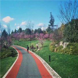 彩色沥青路面道路施工-柏油马路-沥青改色-