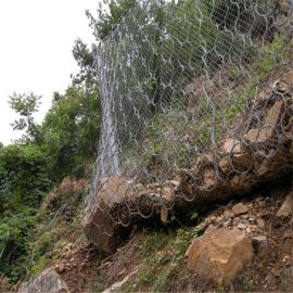 泸州落石防护网、达州柔性防护网、资阳山坡绿化防护网