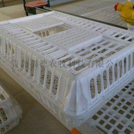 运输鸡用塑料笼 方形鸡笼 鸭笼厂家