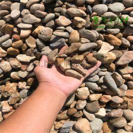 惠州杂色鹅卵石 变压器水处理鹅卵石滤料园林铺路石