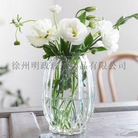 美式花瓶清新花瓶玻璃花瓶装饰花瓶摆件花瓶富贵竹花瓶