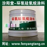 环氧硅氧烷防腐防水涂料适用于钢管的防锈防腐
