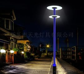 河北2.5米30瓦庭院灯 LED庭院灯