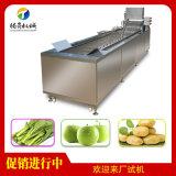 蔬菜水果清洗机 果蔬气泡清洗机 全自动清洗机