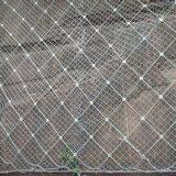 衡水富海厂家直销边坡防护主动防护网 柔性高易铺展