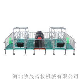 母猪产床双体猪用产床母猪分娩床国标热镀锌猪用分娩栏