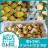 速冻玉米切段机,冻鲜玉米切段机,新款玉米切段机
