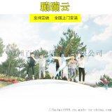 廣西桂林定製蹦蹦雲充氣雲朵跳跳雲主題樂園吸引遊客