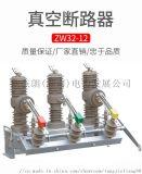 专业生产高压真空断路器 带隔离