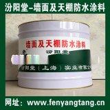 墙面及天棚防水涂料、涂膜坚韧、粘结力强、抗水渗透