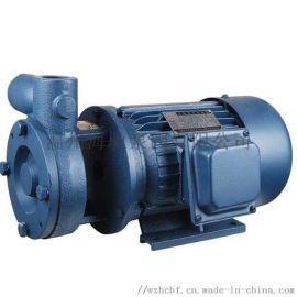 1W型单级漩涡泵