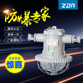 DGS18/127L矿用隔爆型LED巷道灯