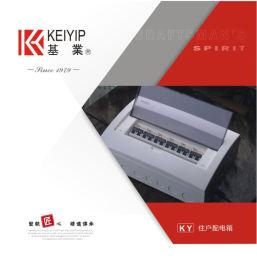 东莞基业住户配电箱 TPMS(R)弧形盖配电箱