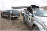 一體式車邊帳篷 專用側邊帳篷 遮陽帳篷 休閒帳篷 汽車帳篷 現貨
