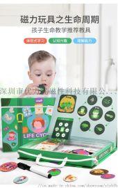 3-7岁早教玩具生命周期拼板拼图儿童益智玩具