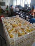 新型全自动荷包蛋设备,厂家生产自动荷包蛋设备
