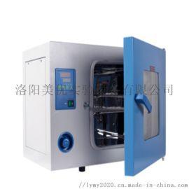 250度鼓风干燥箱DHG-9000