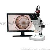 XTL-6745TJ1-960HD型視頻解剖鏡
