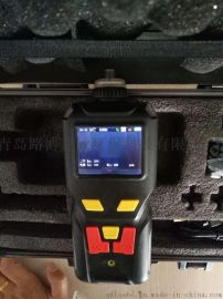 Bluelyzer ST(B20) 德国菲索 手持式烟气分析仪