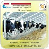 RFID动物电子标签 环保动物耳标 猪牛羊耳标 超高频电子标签厂家,农场畜牧业养殖监控管理