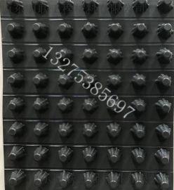 20高排水板/塑料蓄排水板/地下车库塑料排水板