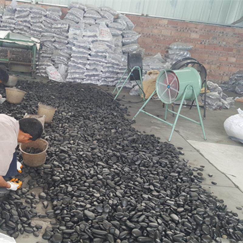 【黑色天然鹅卵石】_3-5公分黑色鹅卵石厂家!