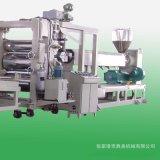 PET片材生產線 塑料片材設備廠家 塑料成型機
