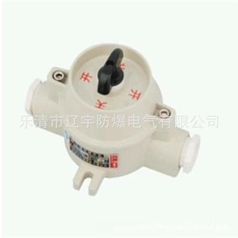 厂家直销 SW-10照明开关  大量批发供应