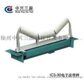 中兴三原ICS-30系列电子皮带秤